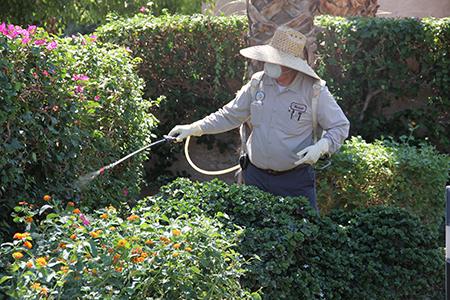 technician applying spray